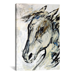 Picassos Horse II by Julian Spencer: 26 x 40-Inch Canvas Print