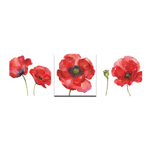Painted Poppies Canvas, Set of 3