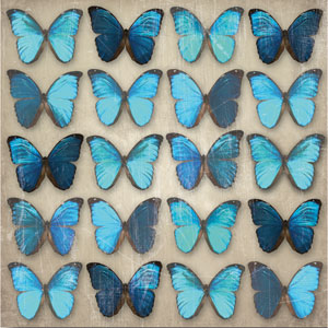 Teal Butterflies Canvas Wall Art