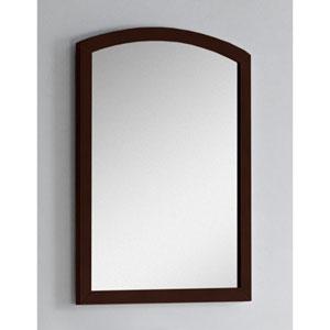 23.62-in. W X 31.5-in. H Modern Birch Wood-Veneer Wood Mirror In Coffee