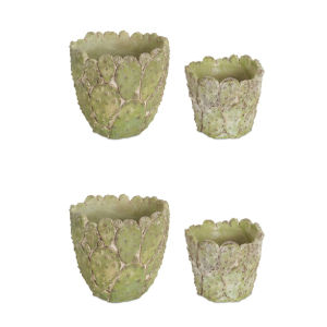 Green and Brown Six-Inch Pot with Cactus, Set of 4
