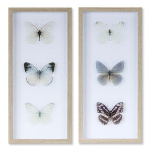 White and Brown Butterfly Print Wall Decor, Set of 2