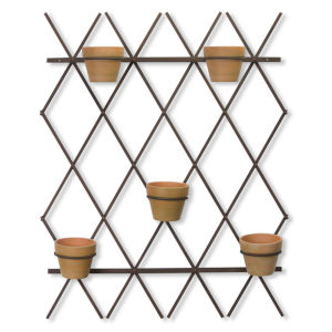 Brown and Black Trellis with Pot