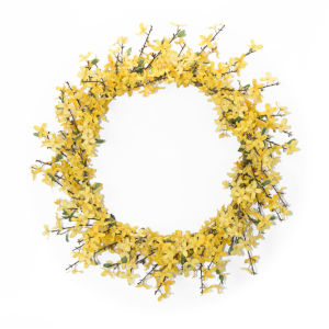 Green and Yellow Forsythia Wreath