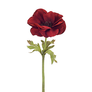 Red Anemone Stem, Set of 24