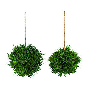 Cypress Orb, Set of 12