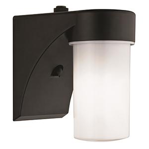 Jelly Jar Black Fluorescent Entry Light