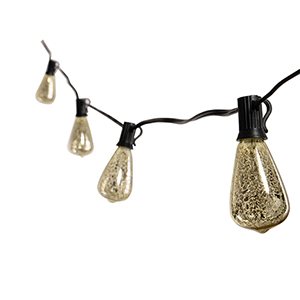 Rosey Silver 10-Light LED String Light