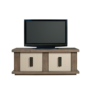 Synchronicity Entertainment Console