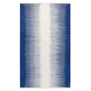 Daybreak Blue Polyester Rectangular: 3 Ft x 5 Ft Outdoor Area Rug