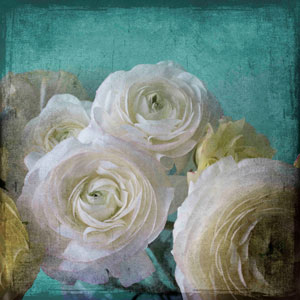 Yellow Ranunculus B 24 x 24 In. Painting Print on Wrapped Canvas
