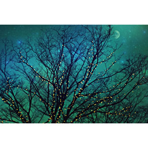 Magical Night 45 x 30 In. Painting Print on Wrapped Canvas
