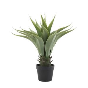 Terrain Faux Agave Plant in Pot