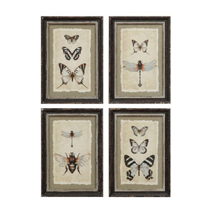 Vintage Insect 13.5 In. Wood Framed Print, Set of Four