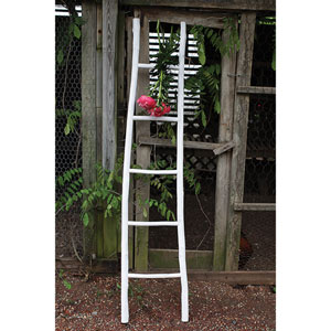 70 In. Decorative Painted Wood Ladder