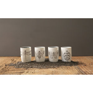 Insect Tumblers, Set of Four