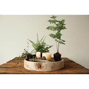 Paulownia Wood Round Carved Tray
