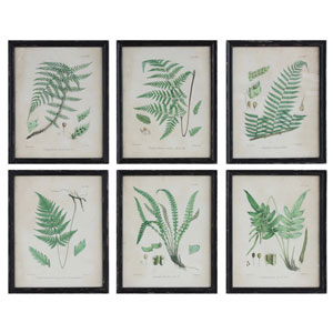 Fern Print Wood Framed Wall Plaque, Set of Six