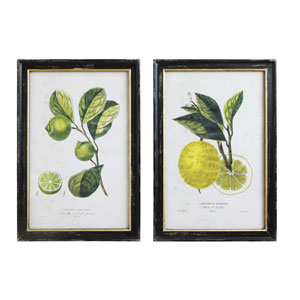 Vintage Lemon and Lime Wall Art, Set of Two