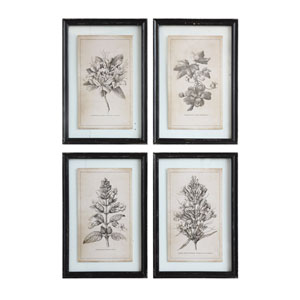 Framed Floral Images, Set of Four