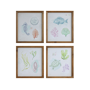 Framed Sea Life Wall Art, Set of Four