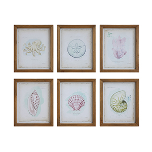 Framed Sea Creatures Wall Art, Set of Six