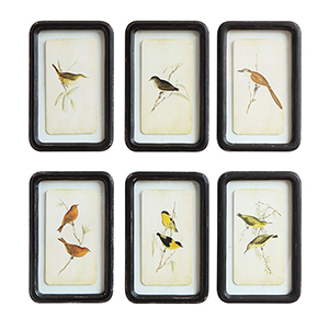 Framed Birds Wall Art, Set of Six
