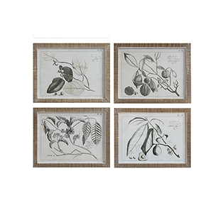 Framed Fruit Branches Wall Art, Set of Four