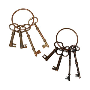Key Ring with 4 Keys, Set of Two
