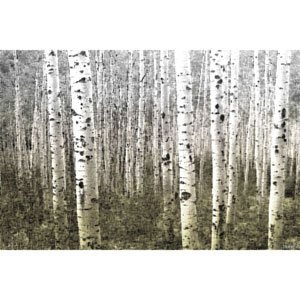 Aspen Highlands 18 x 12 In. Painting Print on Wrapped Canvas