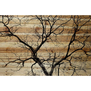 Branching Out III 60 x 40 In. Painting Print on Natural Pine Wood