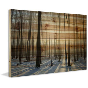 Papineau 60 x 40 In. Painting Print on Natural Pine Wood