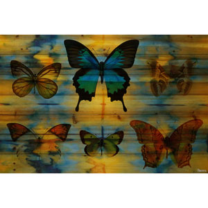 Lepidoptera 60 x 40 In. Painting Print on Natural Pine Wood