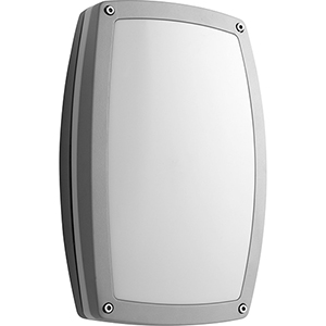 Deva Grey One-Light LED Outdoor Wall Mount
