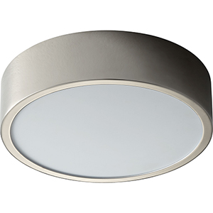 Peepers Polished Nickel One-Light LED 120V/277V Flush Mount