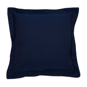 Indigo and Snow 22 x 22 Inch Pillow with Double Flange