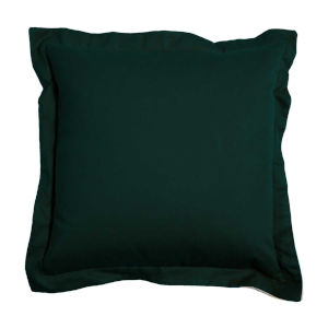 Mallard and Almond 22 x 22 Inch Pillow with Double Flange