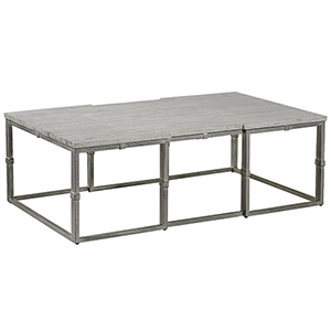 Alden Whitewashed Wood and Brushed Silver Coffee Table