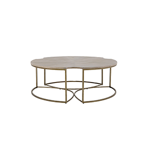 Zelda Cerused Oak And Light Bronze Coffee Table