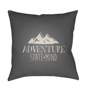 Adventure III Gray and Beige 18 x 18-Inch Throw Pillow
