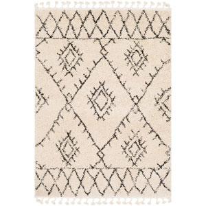 Berber Shag Beige Rectangle: 2 Ft. x 3 Ft. Rug