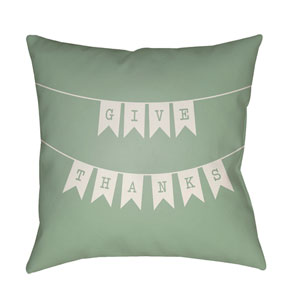 Banner Green and White 18 x 18-Inch Throw Pillow