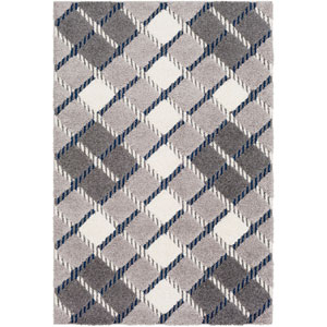 Cut and Loop Shag Gray Rectangle: 5 Ft. 3 In. x 7 Ft. 3 In. Rug