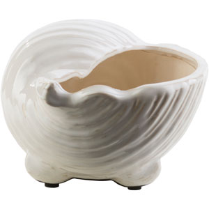Clearwater Ivory Medium Shell