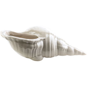 Clearwater Ivory Small Shell