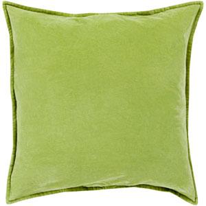 Cotton Velvet Green 22-Inch Pillow Cover