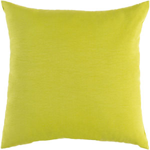 Essien Lime 20 x 20 In. Throw Pillow