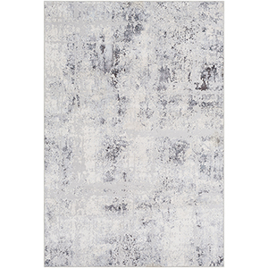 Genesis Grey Rectangular: 2 Ft. x 3 Ft. Rug
