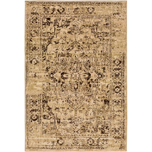 Paramount Neutral and Brown Rectangular: 2 Ft x 3 Ft Rug
