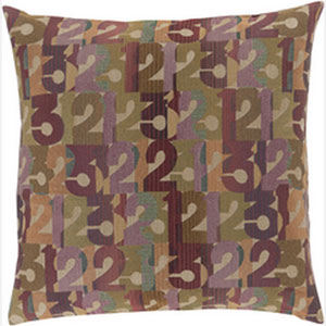 Follow the Numbers Multicolor 22-Inch Pillow with Down Fill